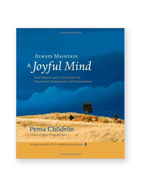 always-maintain-a-joyful-mind_book_hc