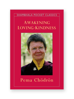 awakening-loving-kindness_book