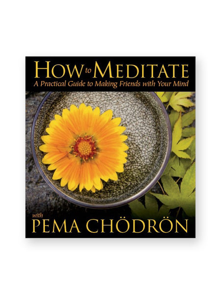 how-to-meditate_cd