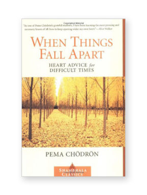 when-things-fall-apart_book_pb