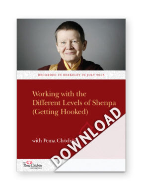 working-with-the-different-levels-of-shenpa_download