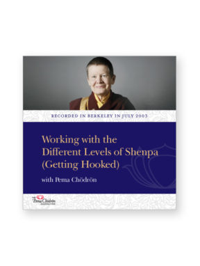 working-with-the-different-levels-of-shenpa_dvd