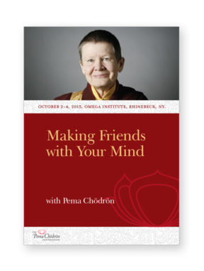making-friends-with-your-mind_cd