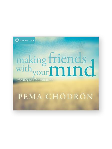 making-friends-mind-cds